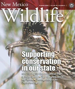New Mexico Wildlife - Summer 2020 - News Magazine from NMDGF Game and Fish