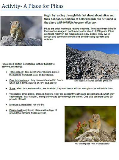 Creating A New Curriculum at Sandia Mountain Natural History Center