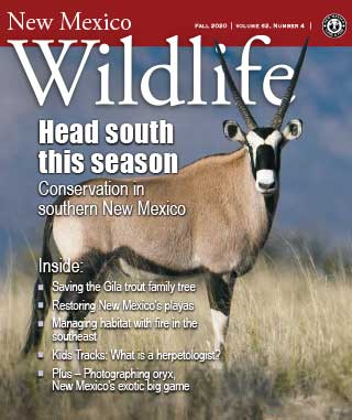 New Mexico Wildlife Magazine, Vol 62 Number 4 Fall 2020